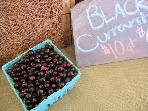 Blackcurrants.jpg