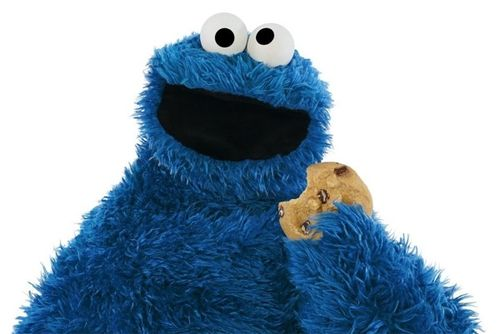 Cookiemonsterphoto.jpg