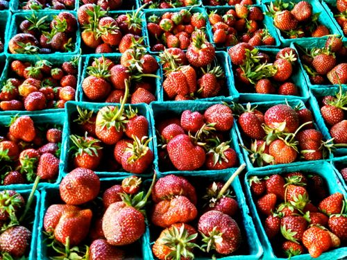 Greenmarketstrawberries.jpg