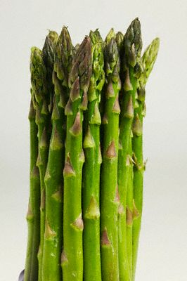 bunch_of_asparagus.jpg